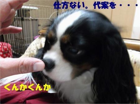 04_convert_20121211175922[1]