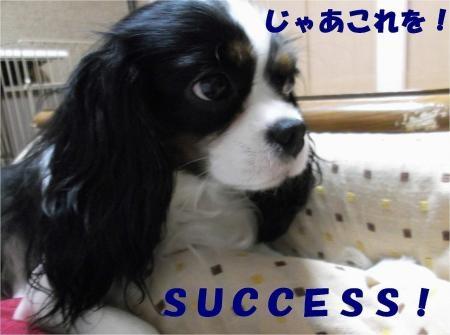 06_convert_20121211175943[1]