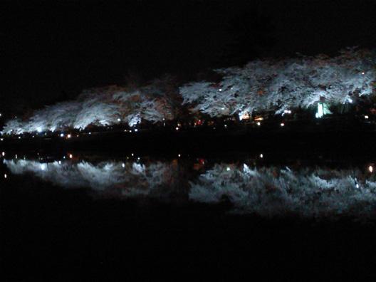 nagaokatenmangu cherryblossom H23-04-04