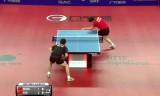 樊振東VS王皓(準決) スウェーデンオープン2014