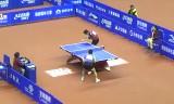 樊振東VS閻安(準々)全中国選手権2014