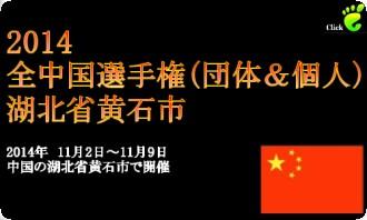 全中国選手権2014