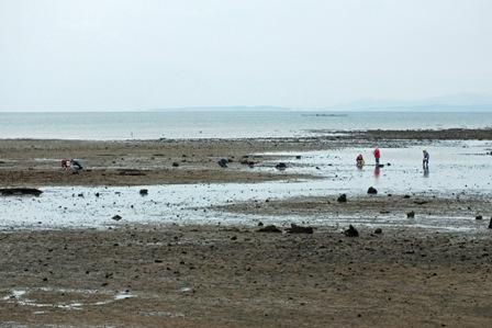浜には5人