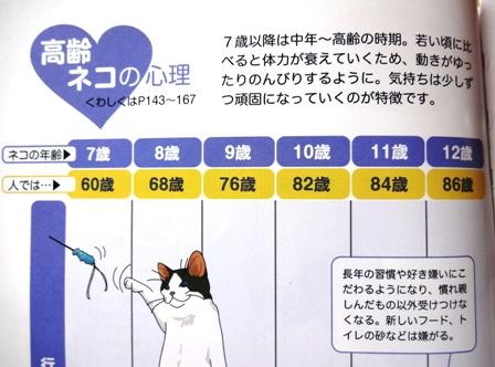 猫の年齢表