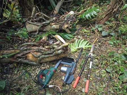 切断中の枝とツール