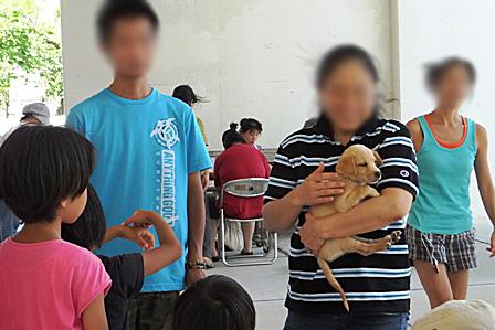 DSCF7287 - 子犬
