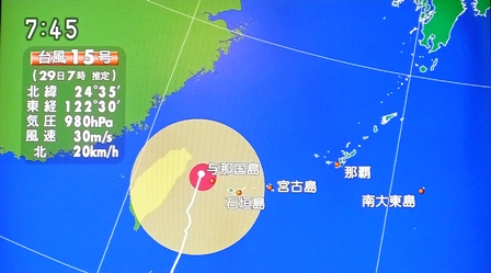 29日7時47分TV