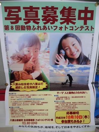 DSC00862ポスター