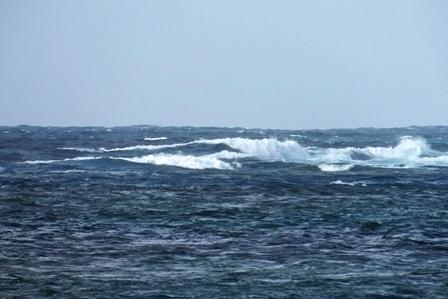 台風26号の波