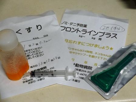 DSC02264 - お薬