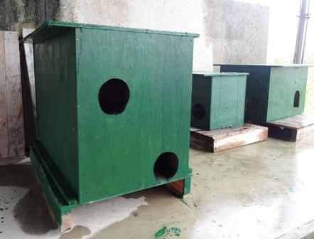 DSC02796 - 猫小屋
