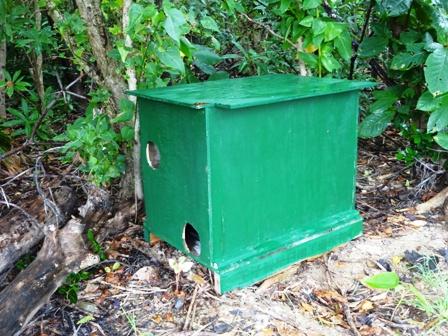 DSC02800 - 猫小屋