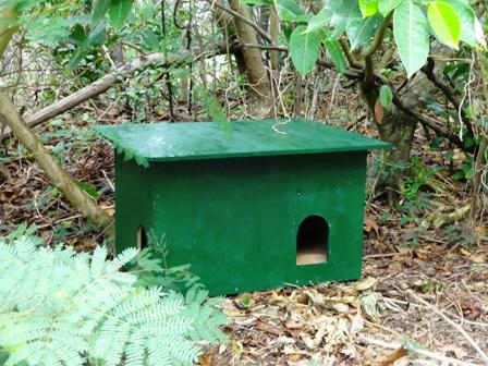 DSC02803 - 猫小屋