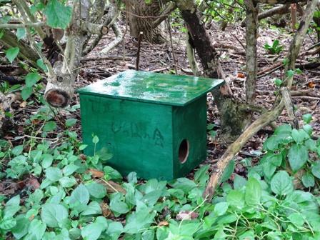 DSC02805 - 猫小屋