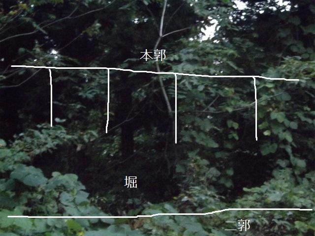 DSCF2317.jpg