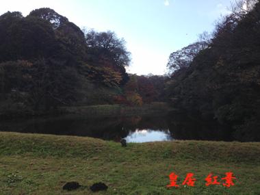 2014120630.jpg