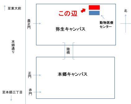 五月祭会場図①(縮小)