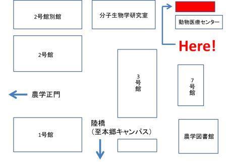 五月祭会場図②(縮小)