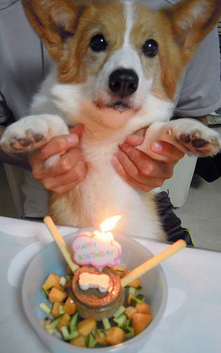 12歳お誕生日