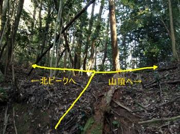 higashinoyama012.jpg