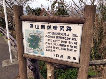 kasayama12.jpg