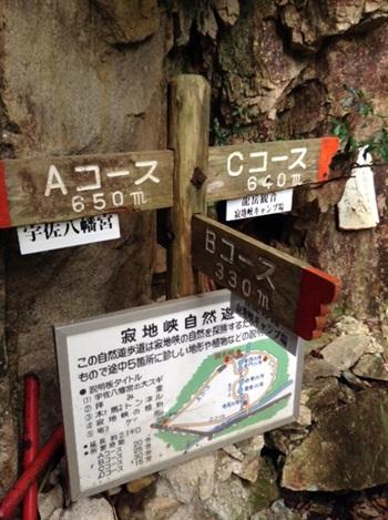 migitaniyama009.jpg