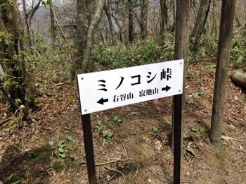 migitaniyama021.jpg