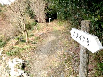 白浜山への接続点02
