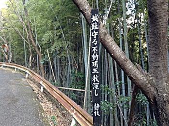 若山城跡02