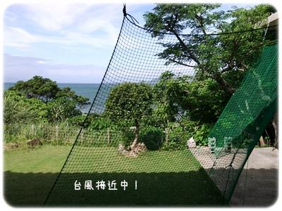 2013_10050004.jpg