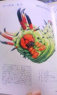 ネガ・SAN オフィシャルブログ powered by ameba-100527_1514~010001.jpg