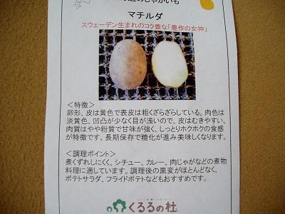 P4160007.jpg