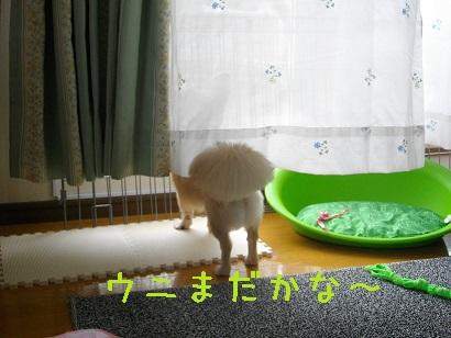 IMGP2146.jpg