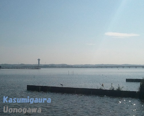 13-08-28akasumi