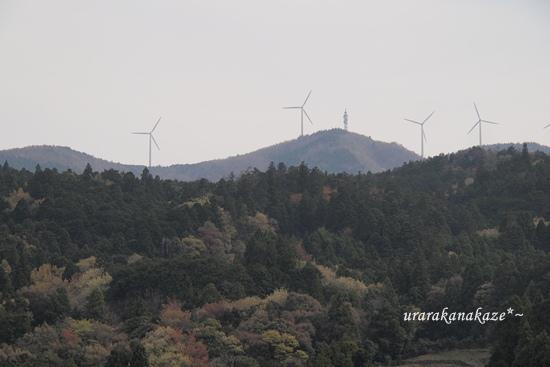 大川原高原
