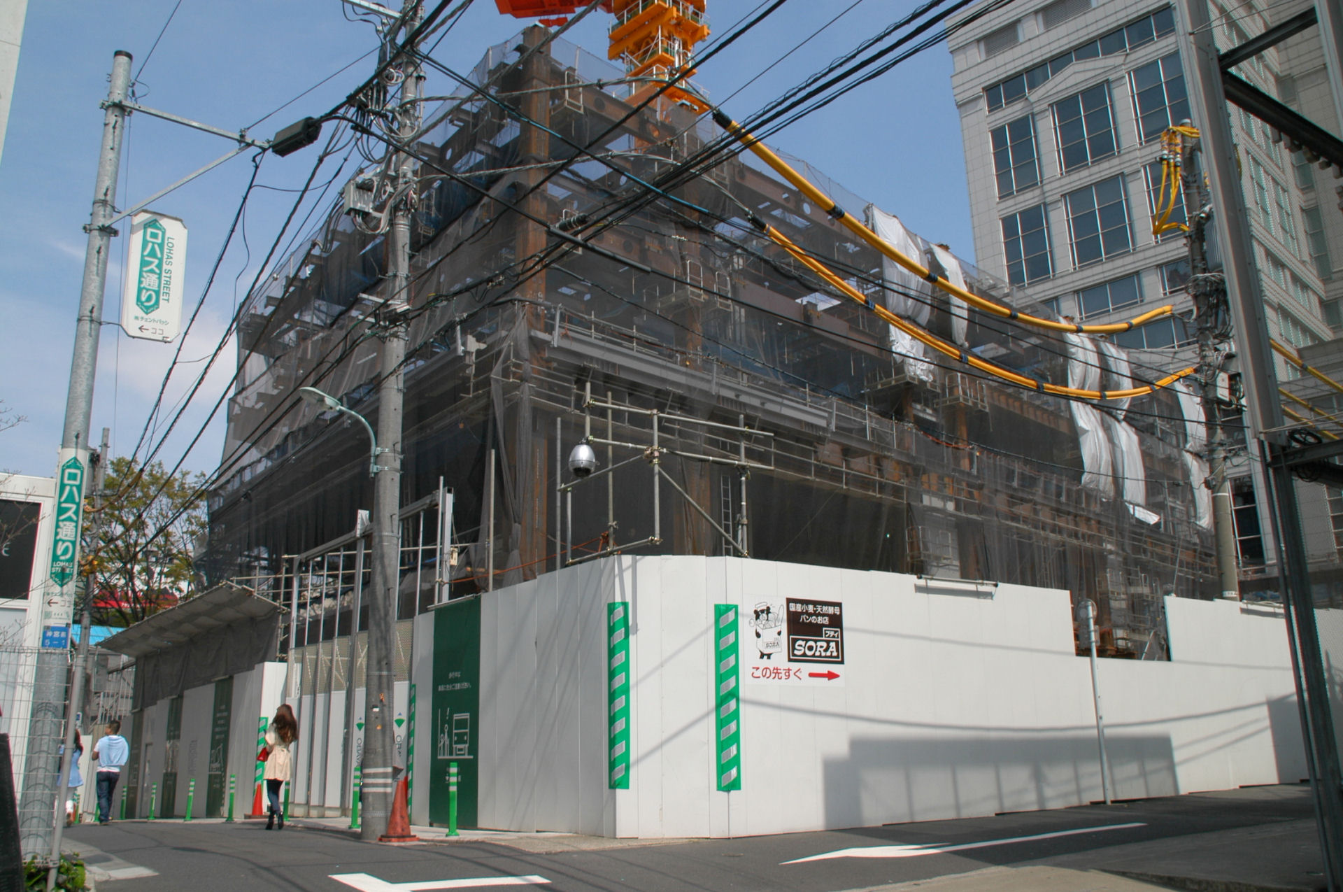 aobayashi0184.jpg