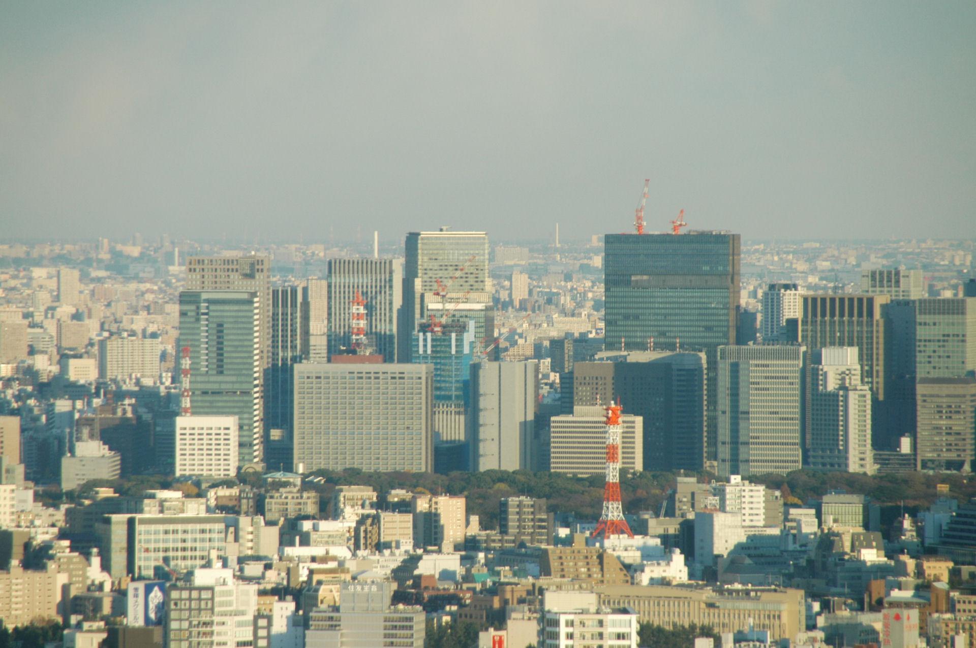 shintocho0168.jpg
