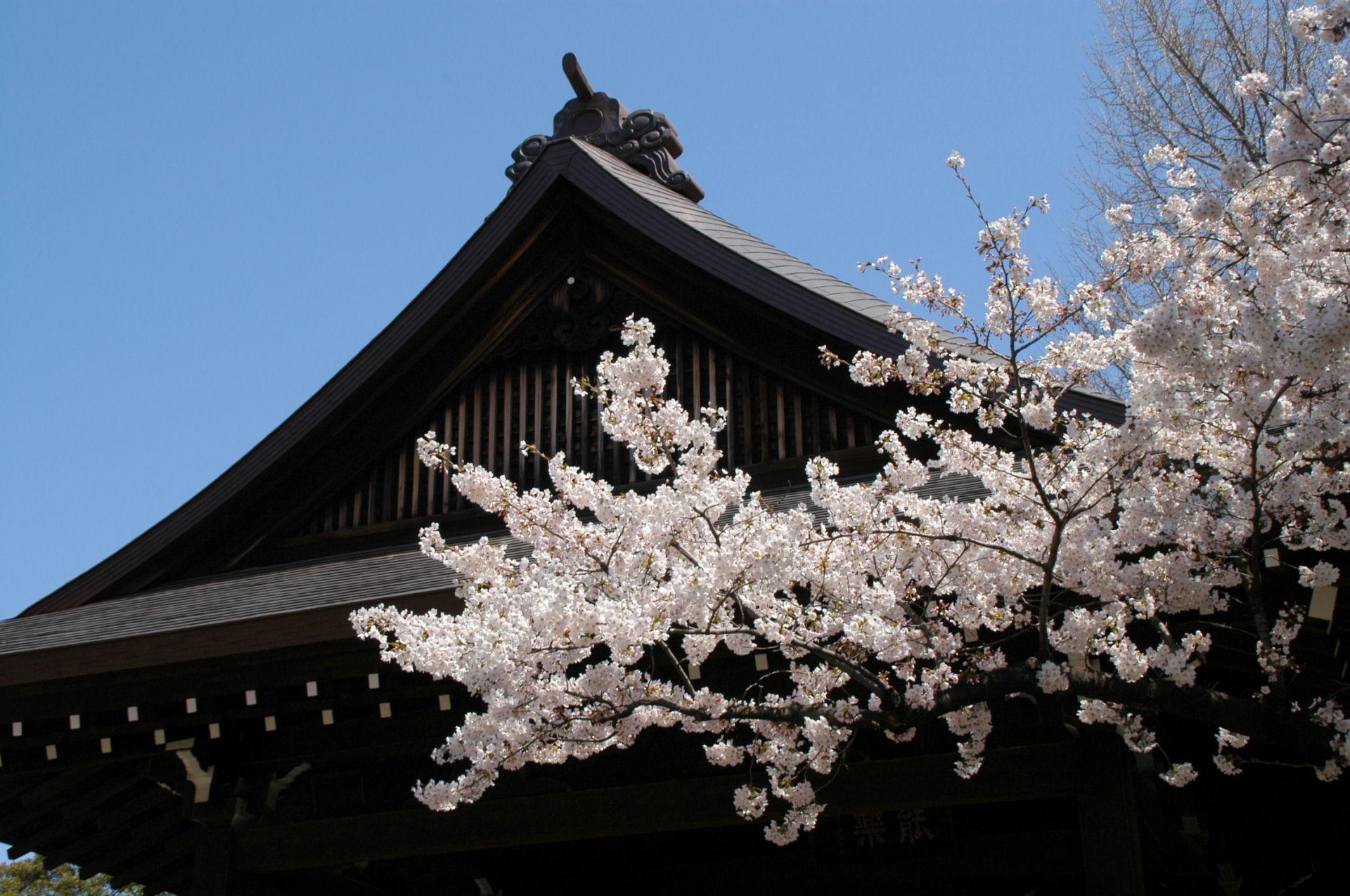 yasukuni0143.jpg