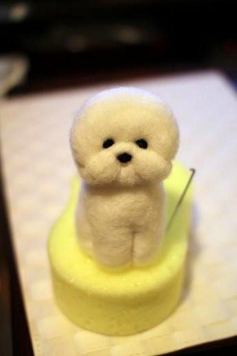 羊毛に挑戦してみた part 1 (6)