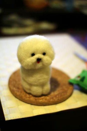 羊毛に挑戦してみた part 1 (1)
