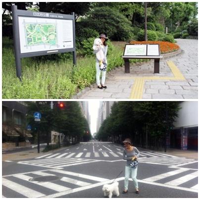 THE PENINSULA TOKYO 滞在記 ~早朝散歩とか朝ごはんとか~ (4)