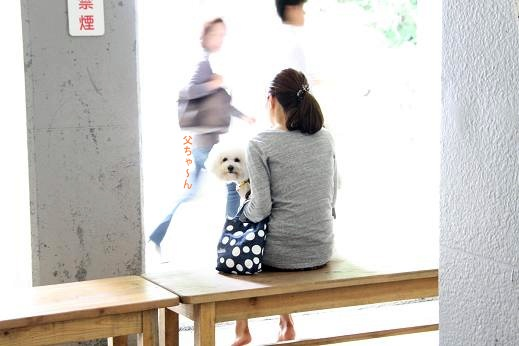 袋田の滝へ ~滝編~ (5)