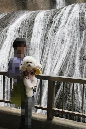 袋田の滝へ ~滝編~ (2)