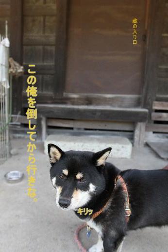 提灯のお片づけ part 4 ~ラスボス編~ (4)
