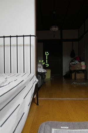 寝る前のお誘い (4)