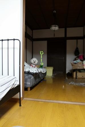 寝る前のお誘い (3)