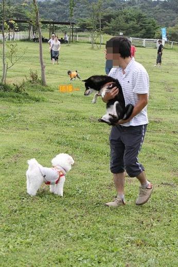 お犬様接待那須旅行 ~那須どうぶつ王国~ (9)