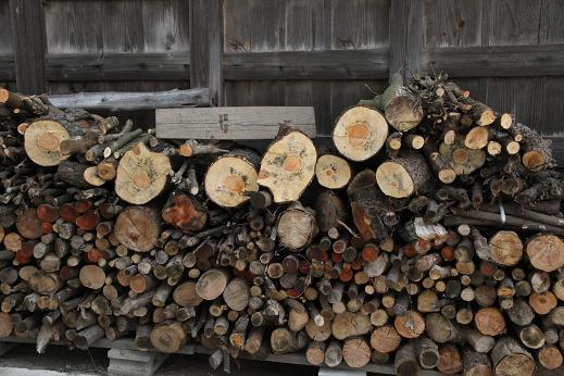 木こり仕事 (1)