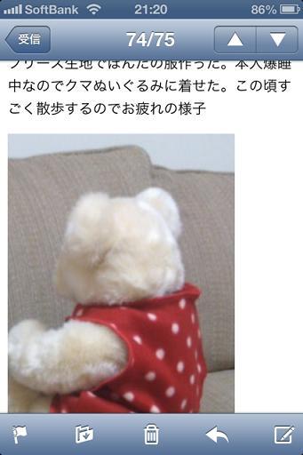 犬服を作ったらしい。 (1)