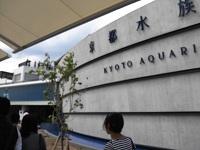 .京都水族館1